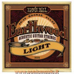 ERNIE BALL 2004 - Earthwood...